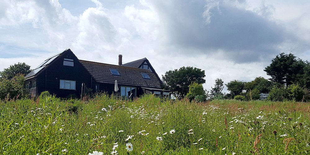 The Little Barn surrounded by Wildflower Meadow